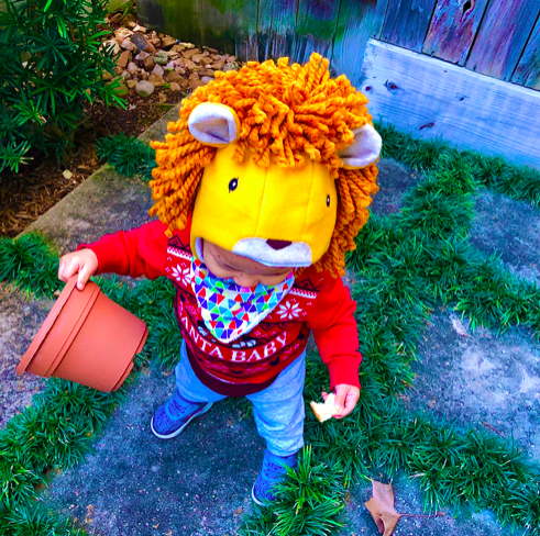 To display child wearing lion hat